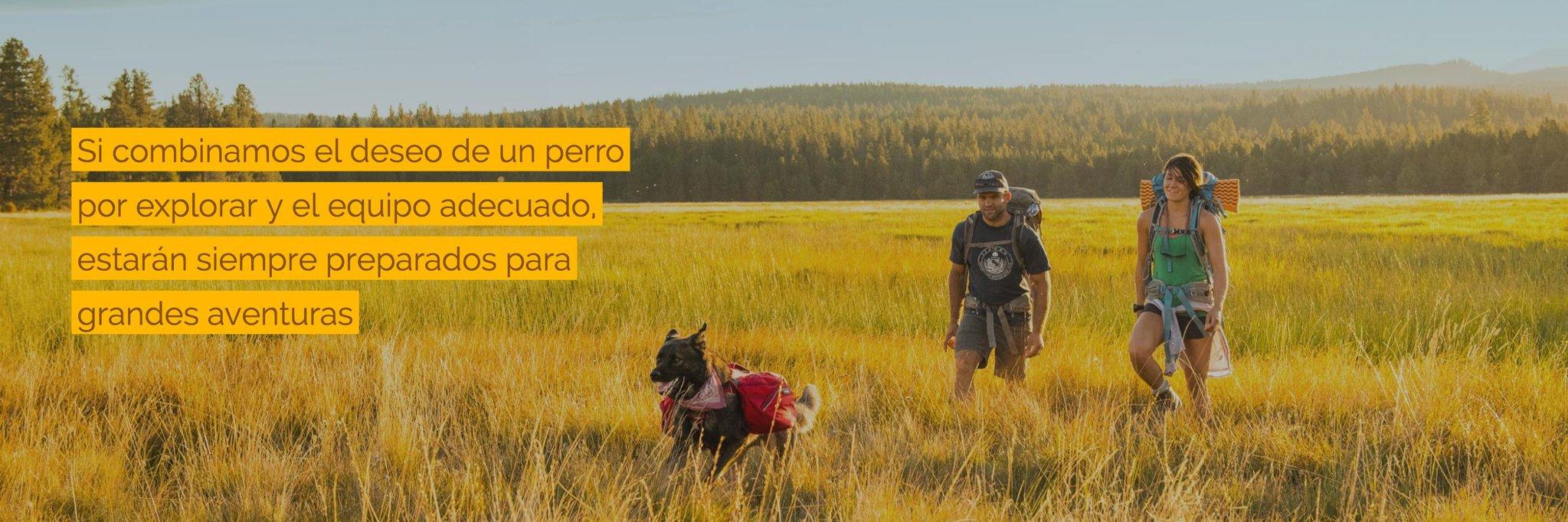 Ruffwear Blog para RealProperty Chile - Productos en Amazon.jpg